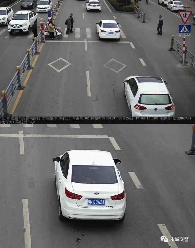 永城这些车主因未礼让行人、开车接打电话、滥用远光灯、 自媒体