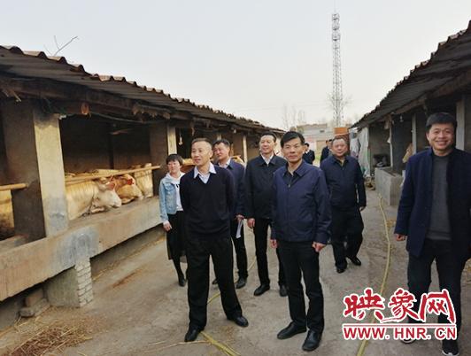 省专项清理整治验收工作组到永城开展检查验收工作 自媒体