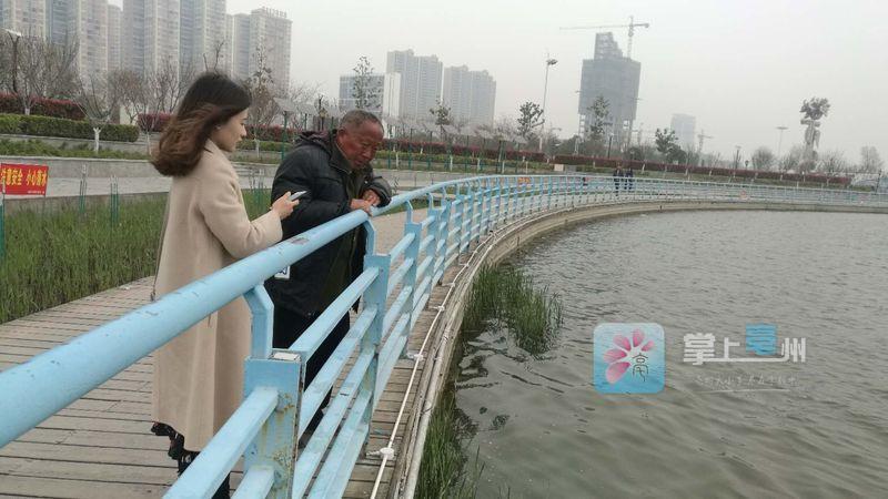 """市政公园南湖有""""鳄鱼""""出没?记者实地去探访... 自媒体"""