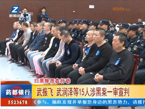 武振飞 武润泽等15人涉黑案一审审判 自媒体