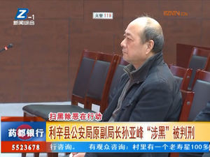 """利辛县公安局原副局长孙亚峰""""涉黑""""被判刑 自媒体"""