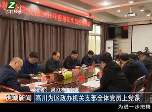 高川为区政办机关支部全体党员上党课 自媒体