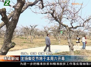 龙扬梨花节将于本周六开幕 自媒体