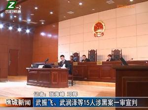 武振飞、武润泽等15人涉黑案一审宣判 自媒体
