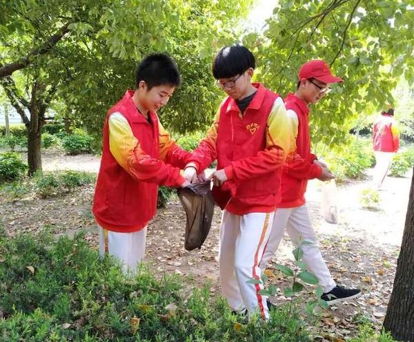 亳州一中青年志愿者开展校园清扫服务活动 自媒体