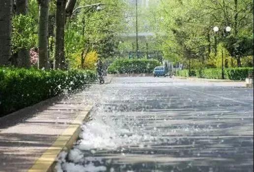 今年永城市杨絮治理情况如何?市林业发展服务中心这样回应...... 自媒体