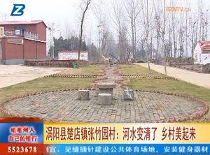 涡阳县楚店镇张竹园村:河水变清了 乡村美起来 自媒体