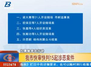 亳州市快审快判15起涉恶案件 自媒体