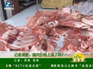 记者调查:猪肉价格上涨了吗? 自媒体