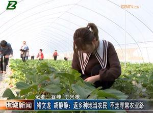 褚文龙 胡静静:返乡种地当农民 不走寻常农业路 自媒体