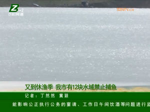 又到休渔季 亳州市有12块水域禁止捕鱼 自媒体