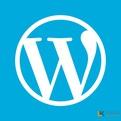 纯代码解决WordPress后台加载缓慢的办法,将后台字体更改为微软雅黑