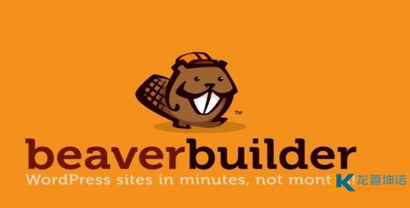 Beaver Builder Pro v2.2.1.5稳定汉化版 页面构建器 专业版破解