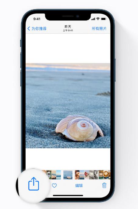 iPhone 12 小技巧:避免让隐私照片显示在照片小组件中