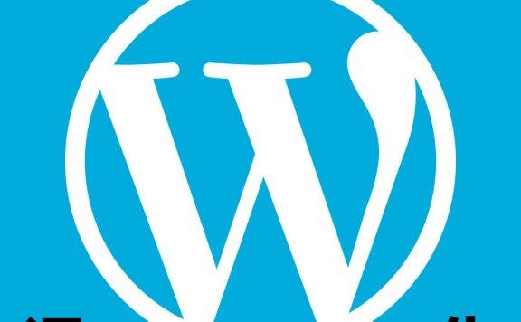 WordPress主题、插件汉化服务