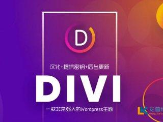 wordpress主题 Divi 主题4.4.3 包含key密匙 WP主题企业中文模板 自适应简约科技支持SEO