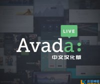 【免费下载】Avada主题v7.3.1中文汉化版 WordPress 多功能主题 企业主题