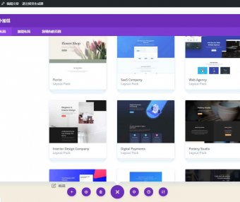 Divi Builder + Modules v4.9.4 WordPress所见即所得页面设计器