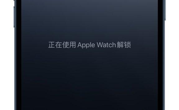 佩戴口罩时使用 Apple Watch 解锁 iPhone 体验如何?